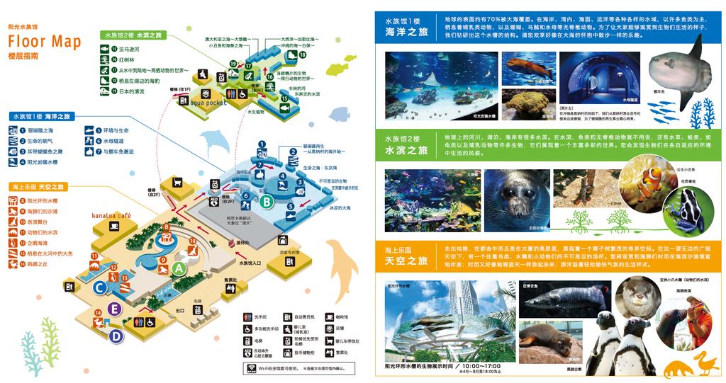 水族館資訊2.png