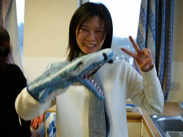 鯊魚!!!