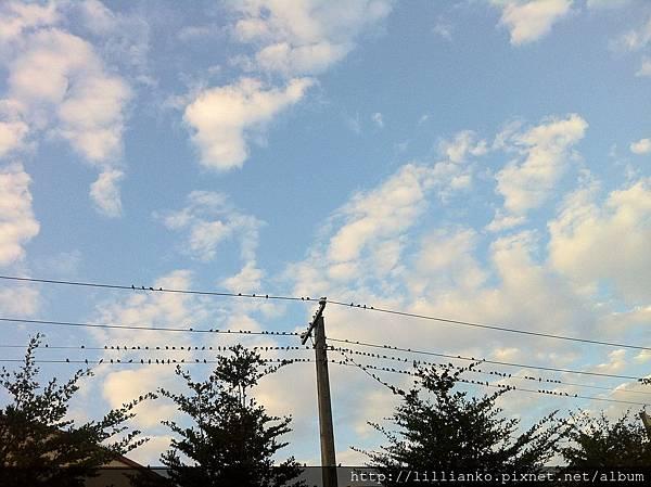 2013.01.10 監理站的天空