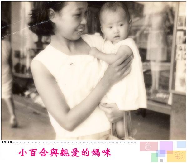 小百合與親愛的媽咪.jpg