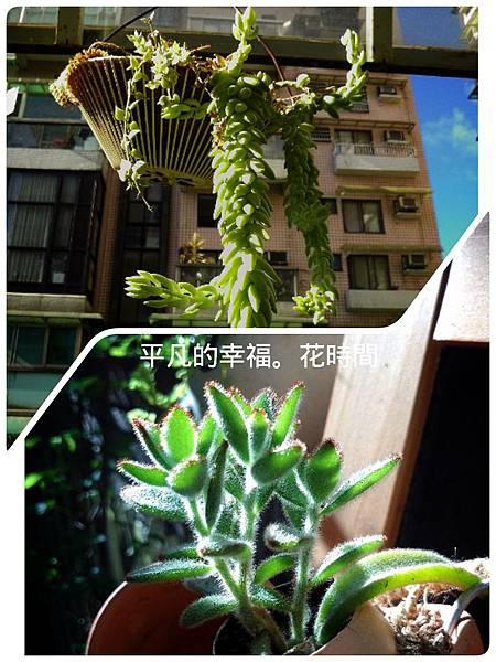 2014-09-08-10-10-44_deco.jpg