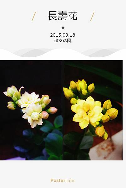 HBGC_20150318083030.jpg