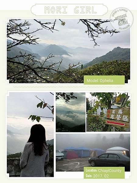 龍美雲霧露營區0225-2.jpg