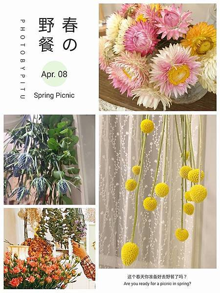 2017-04 2~3花園02.jpg