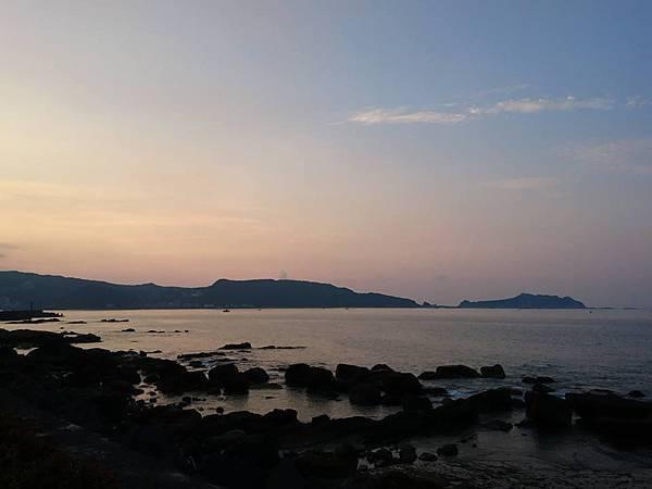 天人菊09.jpg