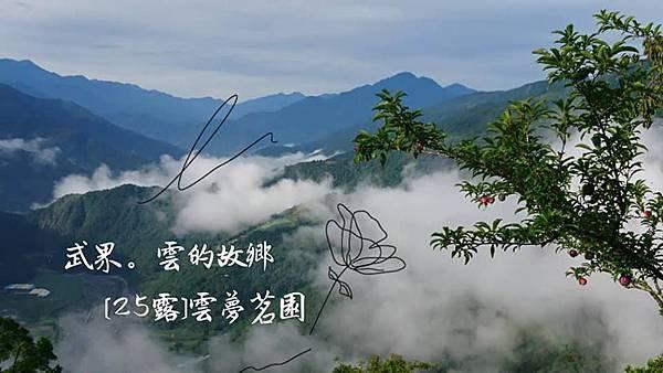 武界。雲夢茗園01.jpg
