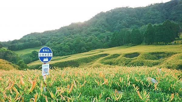 赤柯山02.jpg