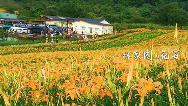 赤柯山12.jpg