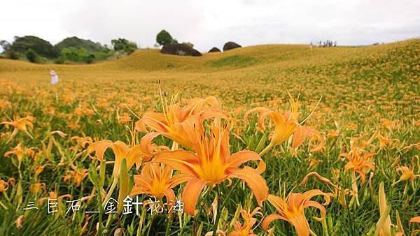 赤柯山13.jpg