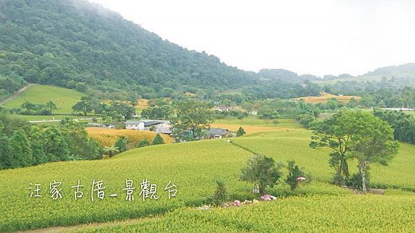 赤柯山25.jpg