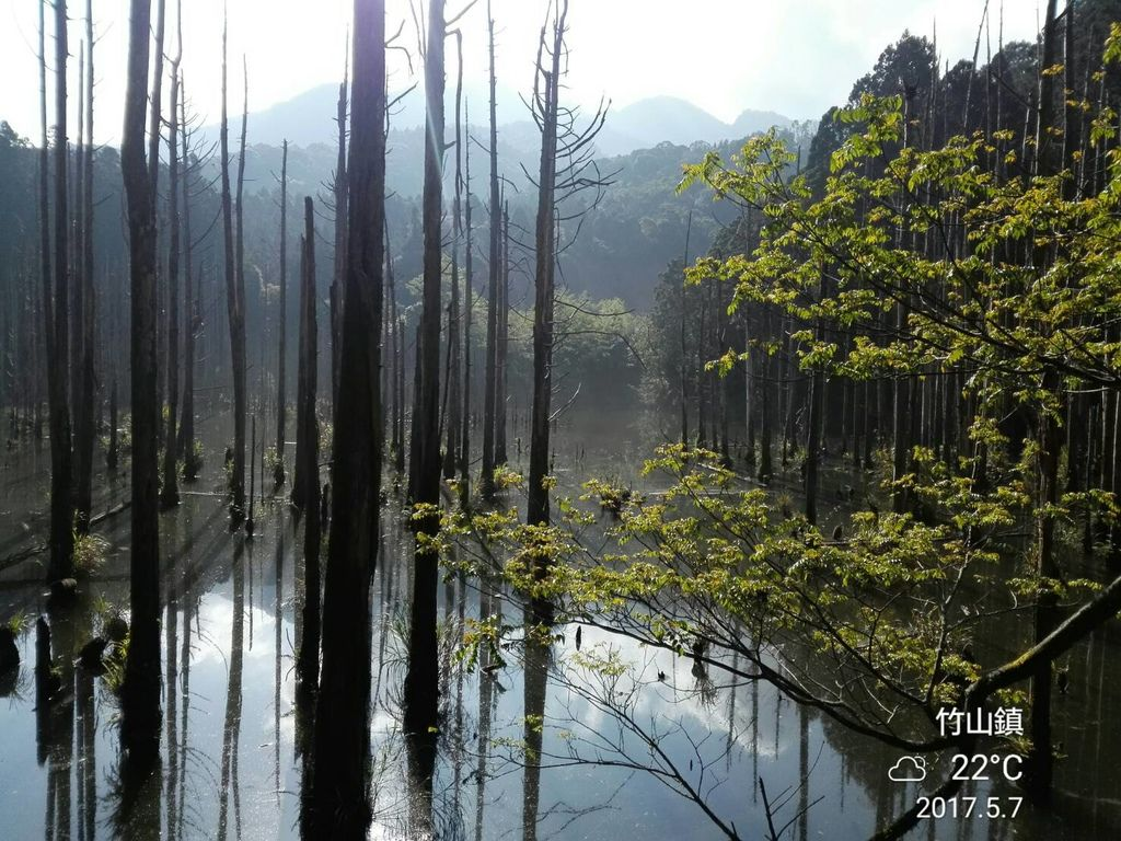 170507水漾森林