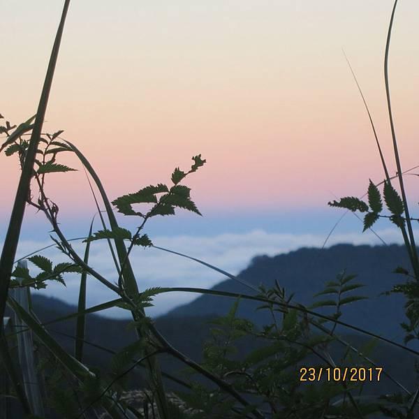 171023特富野古道 東埔山莊清晨