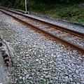 鐵軌近照.jpg