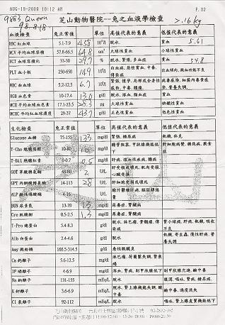 白白血檢98-1.bmp