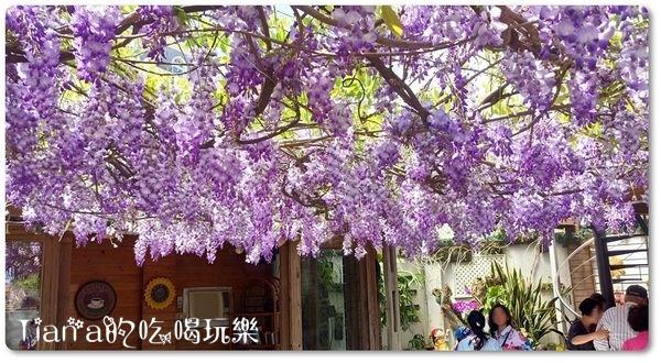 新埔紫藤居1.jpg