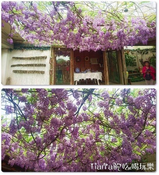 新埔紫藤居5.jpg