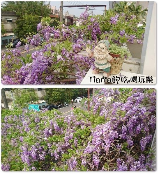 新埔紫藤居7.jpg