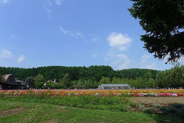 20130816富田農場