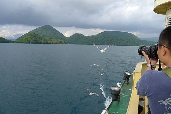 後面的人拍海鷗