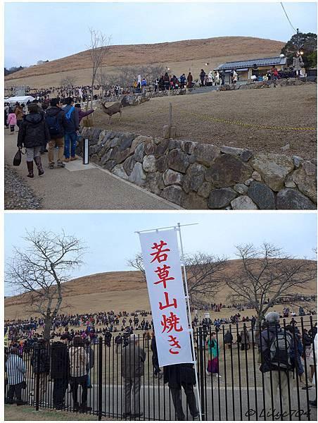 0125_若草山燒1_signed.JPG