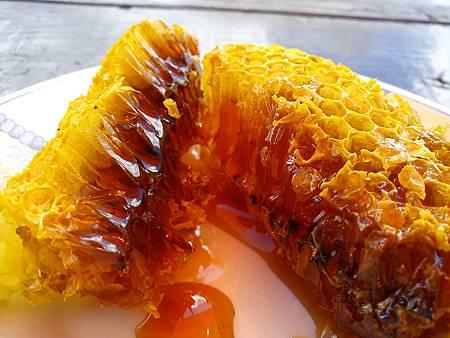 甜蜜的蜜巢
