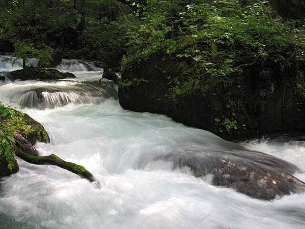 奧入瀨溪4