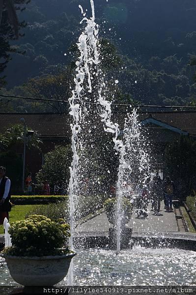 噴泉水舞_02.jpg