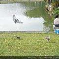 碧湖公園_10.JPG