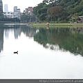碧湖公園_14.JPG