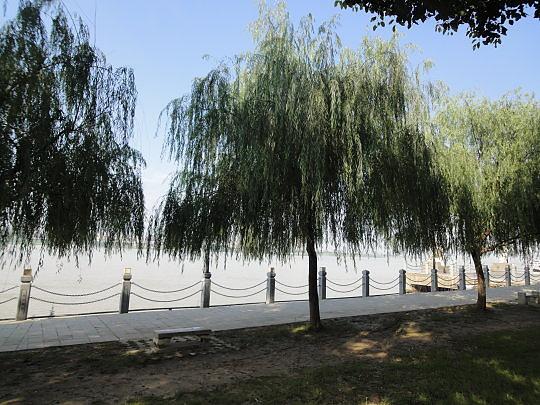西洞庭湖柳葉湖