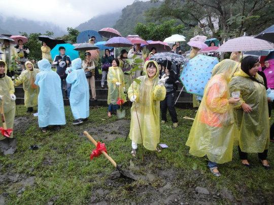 台南分會主任種下的櫻花樹