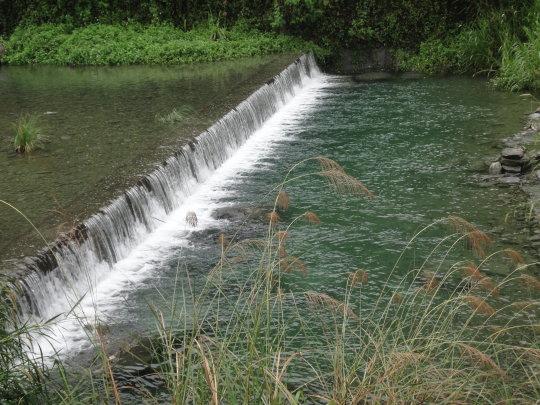 賽斯村溪水