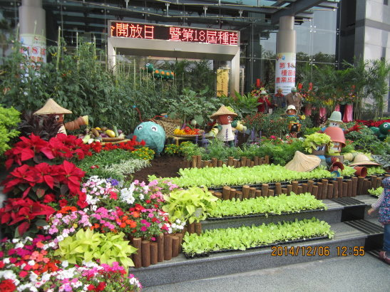 台南農改場開放參觀103.12.6.
