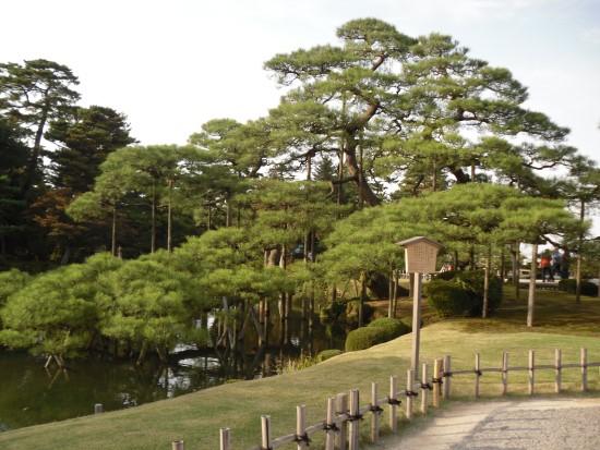 金澤兼六園3.jpg