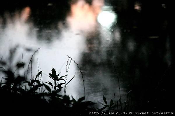 101.07.04中央湖