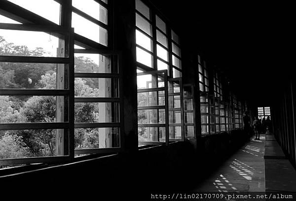 黑白13.jpg