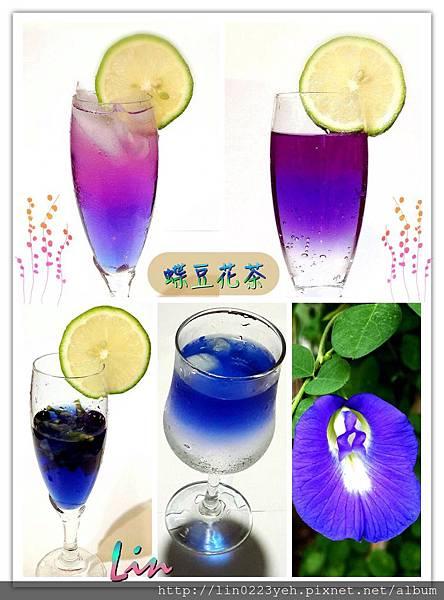 蝶豆花飲料