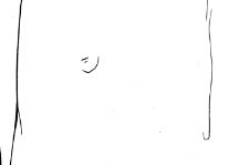 乳頭線稿.jpg