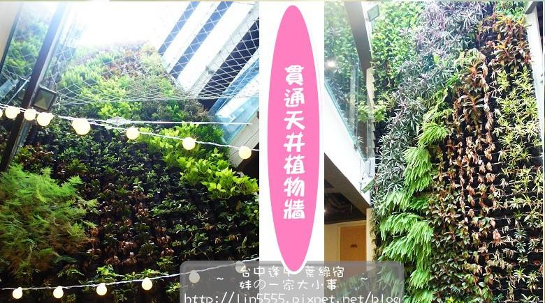 台中逢甲葉綠宿飯店背包客4.jpg