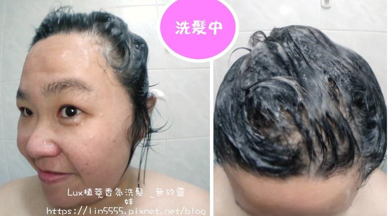 Lux植萃香氛洗髮無矽靈玫瑰修護香氛洗髮露、玫瑰修護香氛護髮精華5.jpg