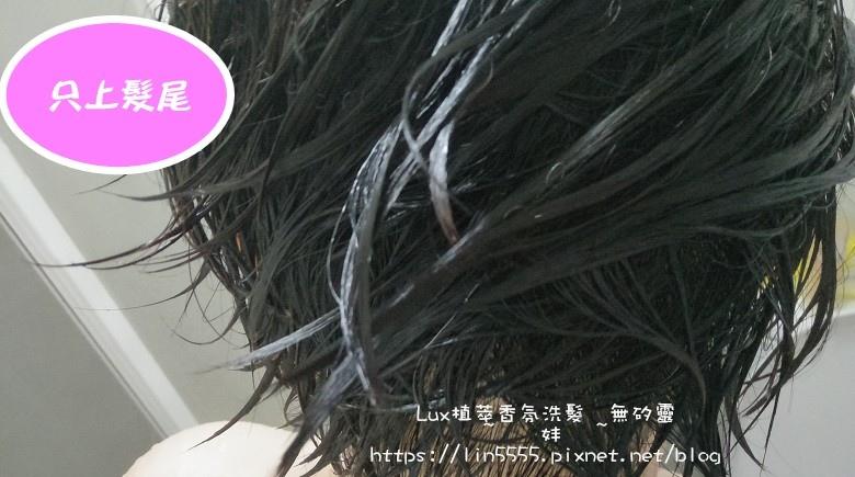 Lux植萃香氛洗髮無矽靈玫瑰修護香氛洗髮露、玫瑰修護香氛護髮精華7.jpg