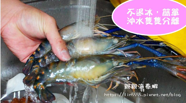 親親海泰蝦3.jpg