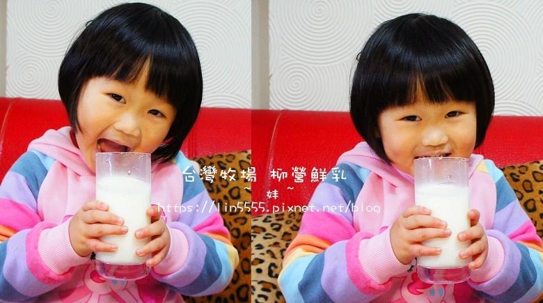 柳營鮮奶10.jpg