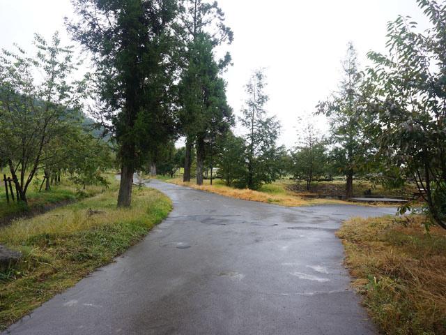 a12露營區叉路.JPG
