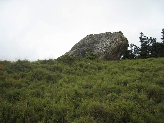 a34青蛙石.JPG