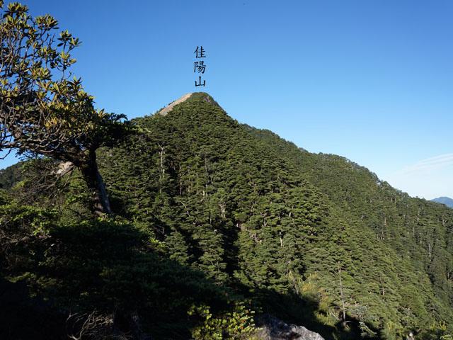 a32佳陽山.JPG