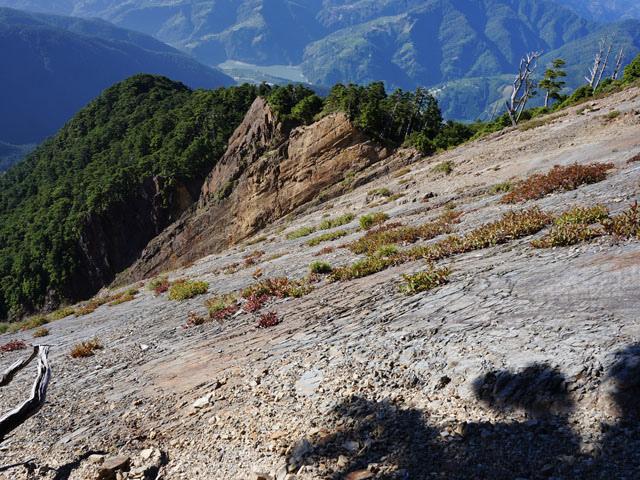 a35佳陽山崩壁.JPG