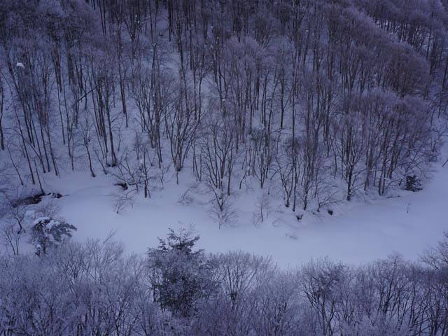 a22纜車上賞雪景.JPG