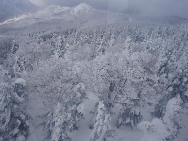 a28纜車看雪景.JPG