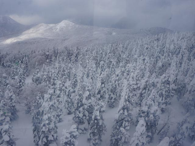 a29纜車看雪景.JPG